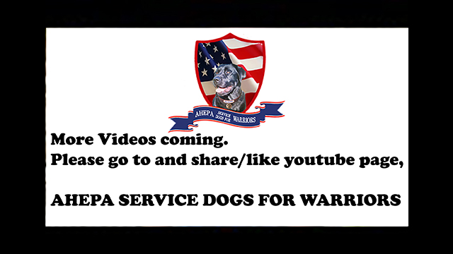AHEPA Service Dogs for Warriors